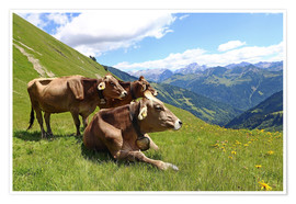 Póster Premium  Cows relax on the mountain