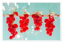 Póster Premium  Red currants full - K&L Food Style