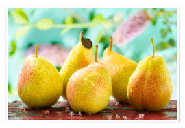 Póster Premium  Five pears - K&L Food Style