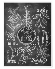 Póster Premium  Herbs - Lily & Val