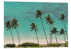 Quadro em PVC  Palm Trees in front of the turquoise Ocean - Markus Ulrich