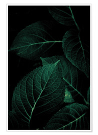 Póster Premium Dark Leaves 1
