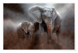 Póster Premium  Elephant with baby - Peter Roder