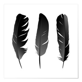 Póster Premium  Three feathers