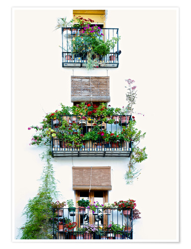 Póster Premium Facade with balconies full of flowers in Valencia