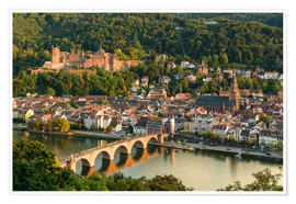 Póster Premium View of the Old Town of Heidelberg from the Philosophenweg