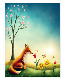 Póster Premium Fox in the spring