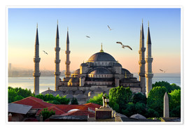 Póster Premium  The blue mosque in Istanbul