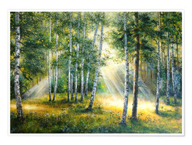 Póster Premium Sunlight in the green forest