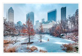 Póster Premium  Winter Central Park, New York - Sascha Kilmer