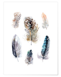 Póster Premium  Feathers collection - Verbrugge Watercolor