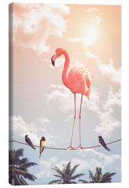 Quadro em tela  Flamingo and Friends - Jonas Loose