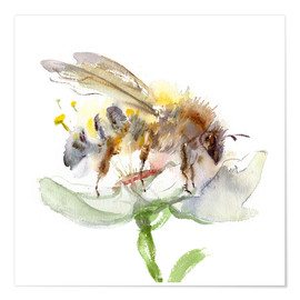Póster Premium  Honey bee - Verbrugge Watercolor