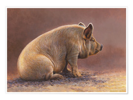Póster Premium  Pig in the wallow