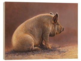 Quadro de madeira  Pig in the wallow