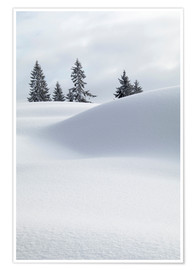Póster Premium Snow dunes in front of white sky