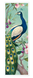 Póster Premium  Pretty Peacock II - Julia Purinton