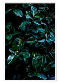 Póster Premium Dark Leaves 4