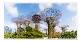 Póster Premium  The Supertree grove in Singapore - Matteo Colombo