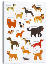 Quadro em tela  Dogs in all sizes - Kidz Collection