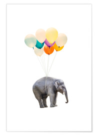 Póster Premium Elephant with colorful balloons